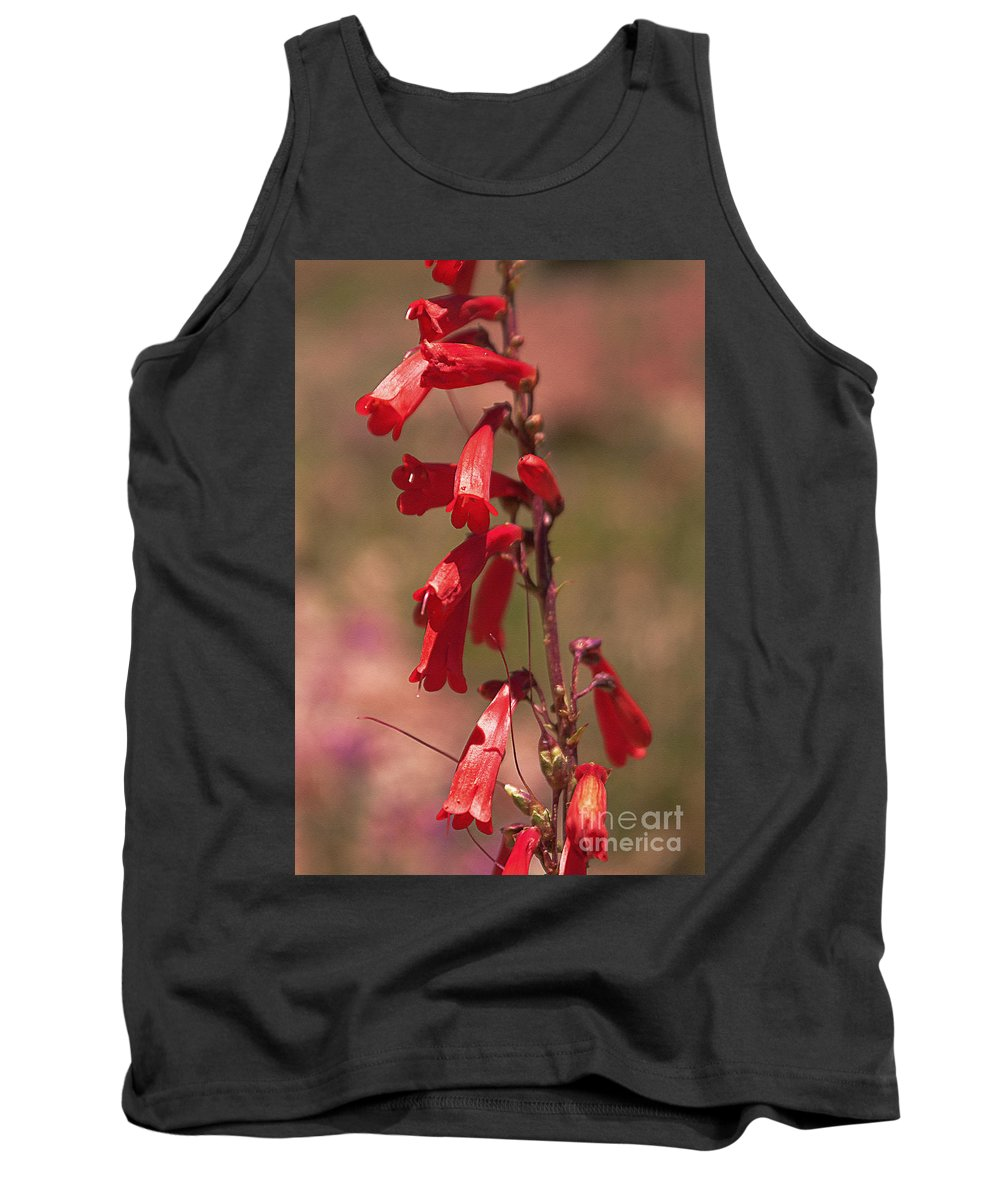 Scarlet Tank Top featuring the photograph Scarlet Colorado Penstemons by Janice Pariza