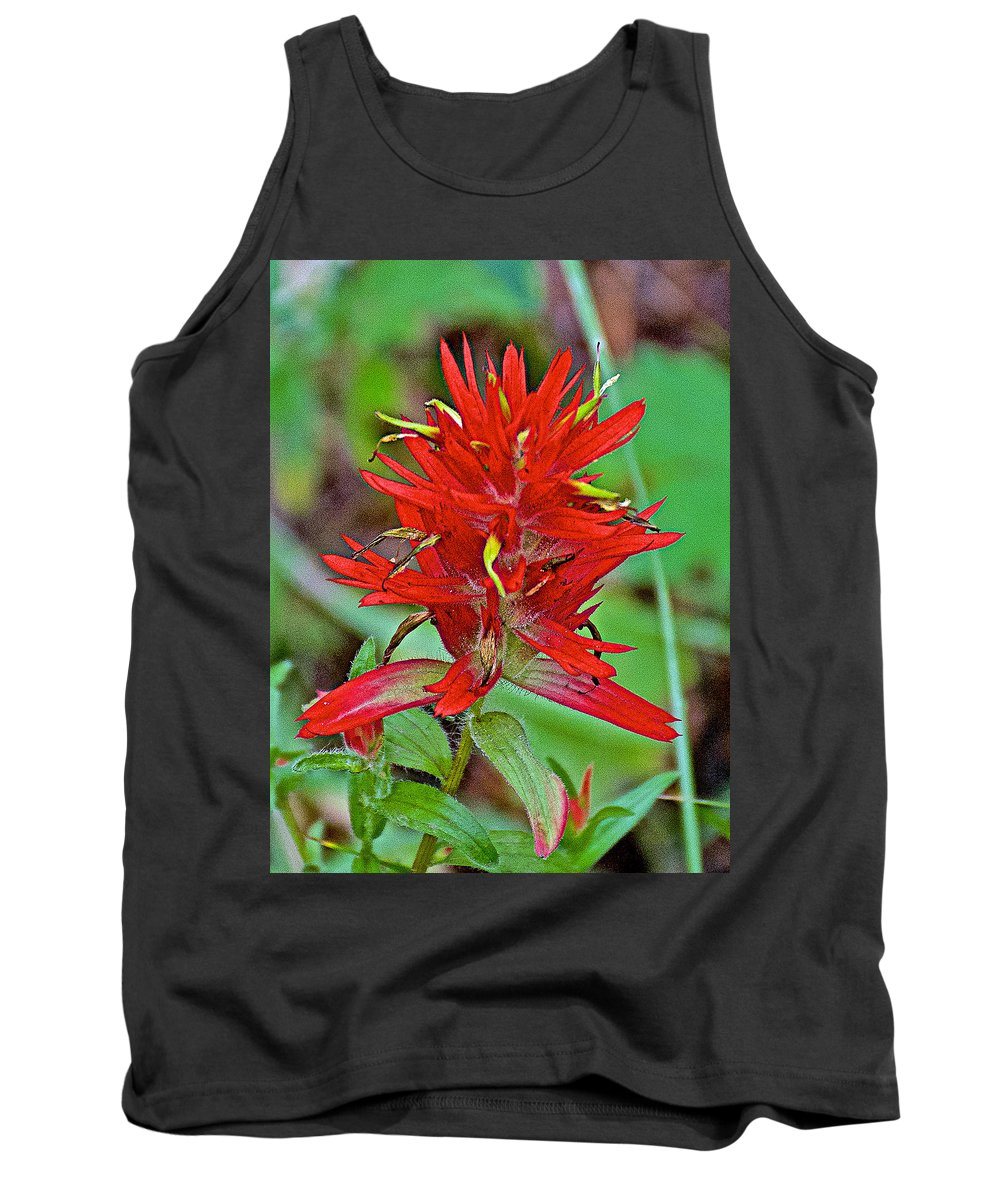 Scarlet Paintbrush On Trail To Swan Lake In Grand Teton National Park Tank Top featuring the photograph Scarlet Paintbrush On Trail To Swan Lake In Grand Teton National Park-wyoming- by Ruth Hager