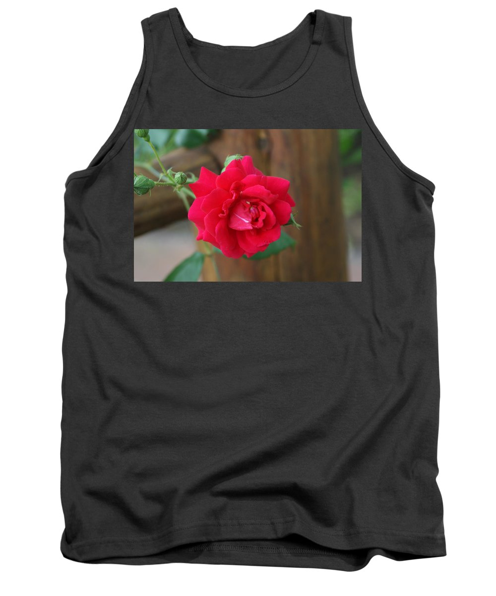 Red Tank Top featuring the photograph Scarlet... by Rob Luzier
