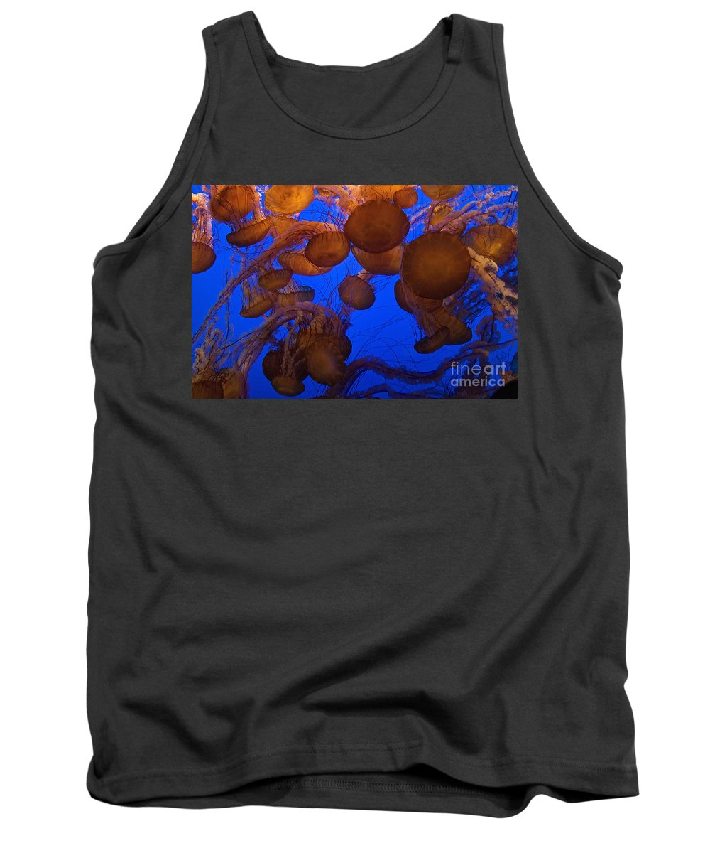Nature Tank Top featuring the photograph Sea Nettle Jellyfish by Connie Bransilver