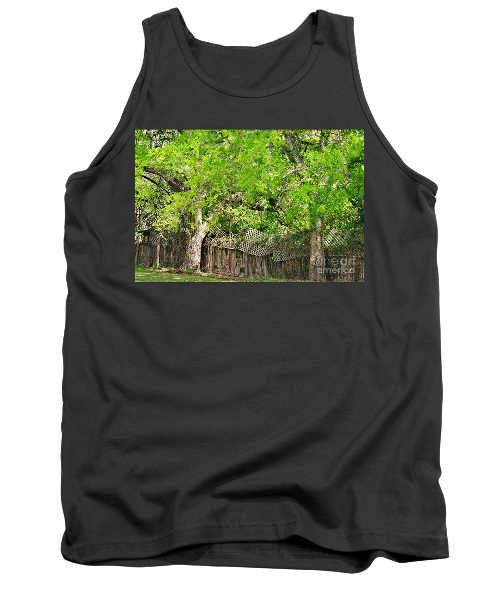 Senescence Tank Top featuring the photograph Senescence by Gary Richards