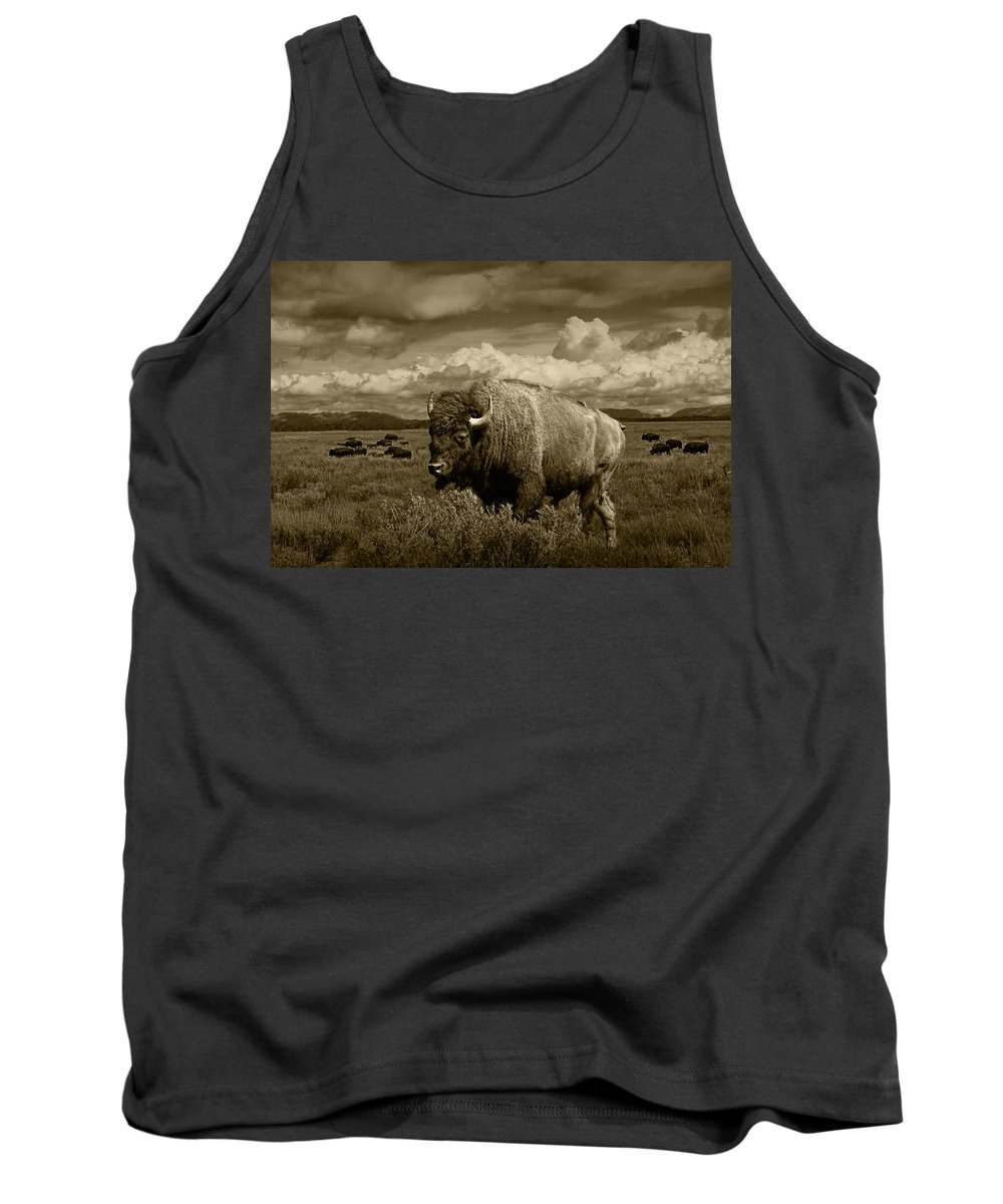 Bison Tank Top featuring the photograph King Of The Herd by Randall Nyhof