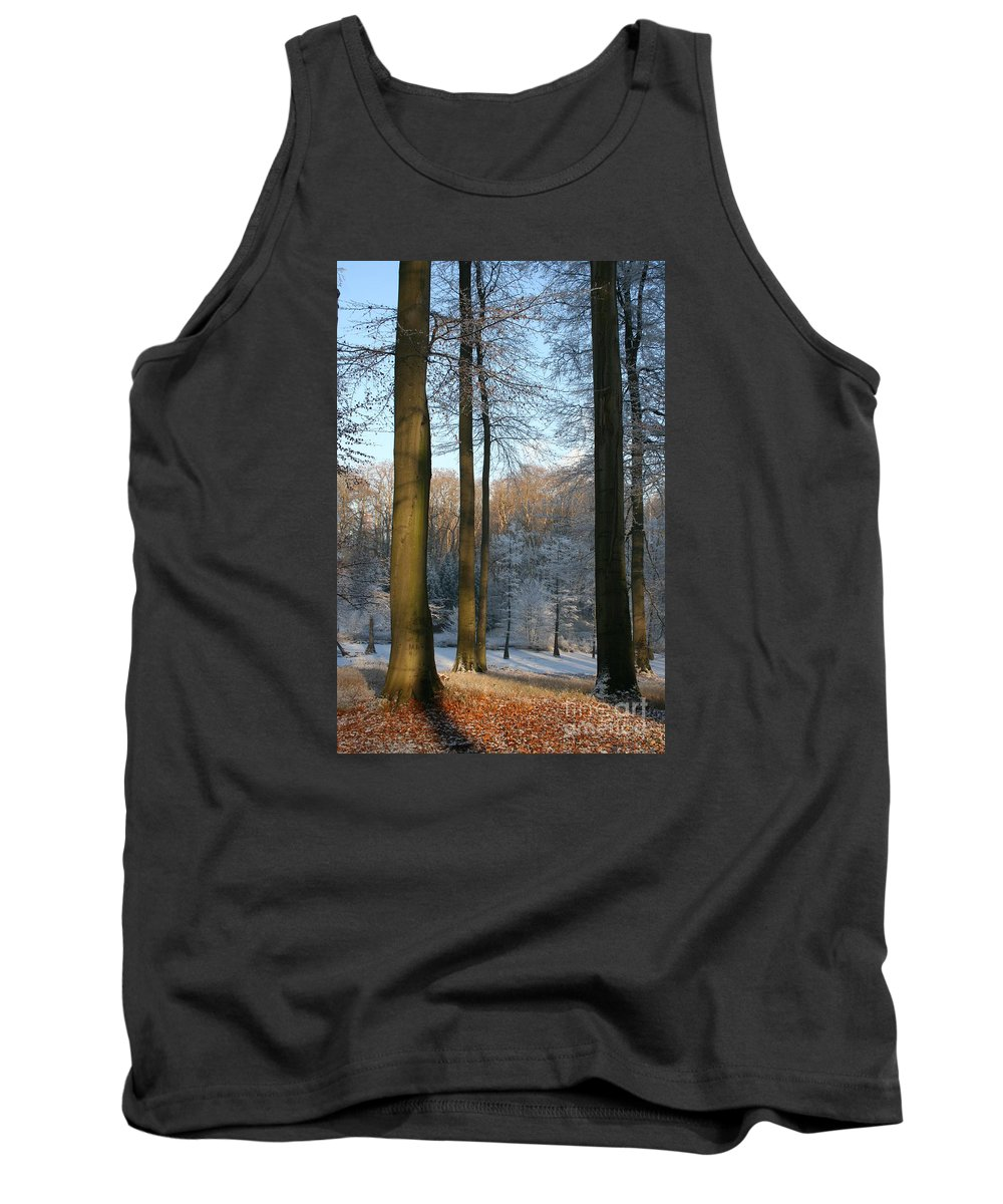 Sunlight Tank Top featuring the photograph Light And Shadows In Wintertime by Christiane Schulze Art And Photography
