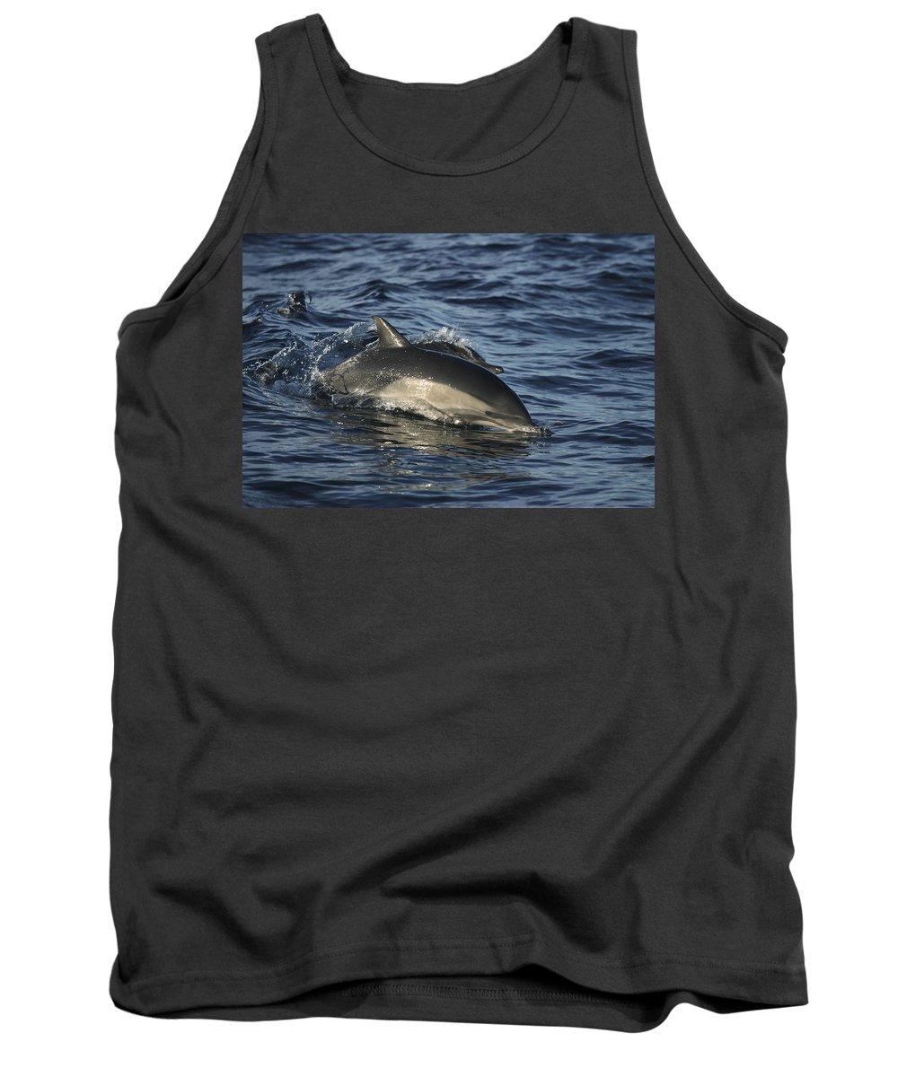 Feb0514 Tank Top featuring the photograph Short-beaked Common Dolphin Sea by Hiroya Minakuchi