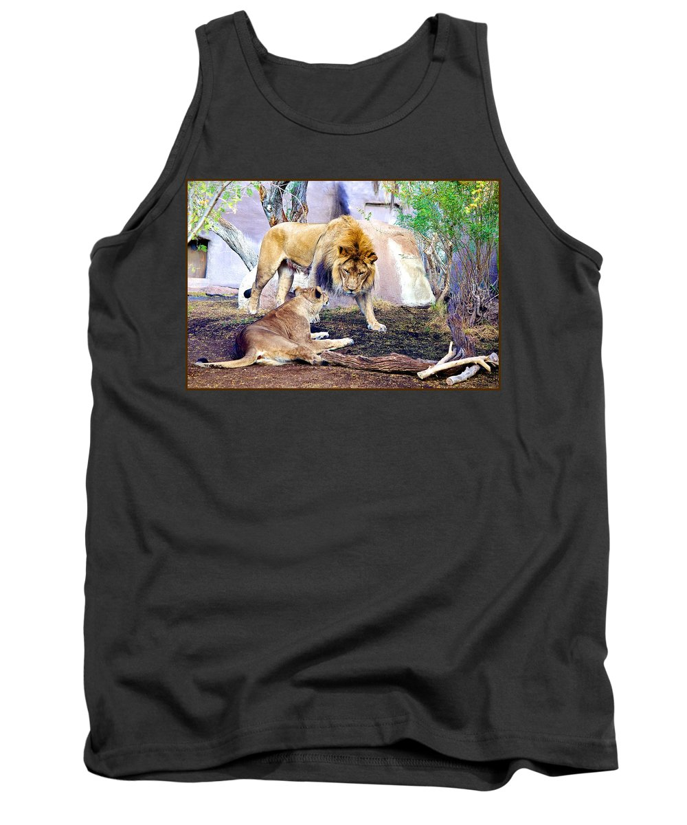Animals Tank Top featuring the photograph Siesta Time by Barbara Zahno