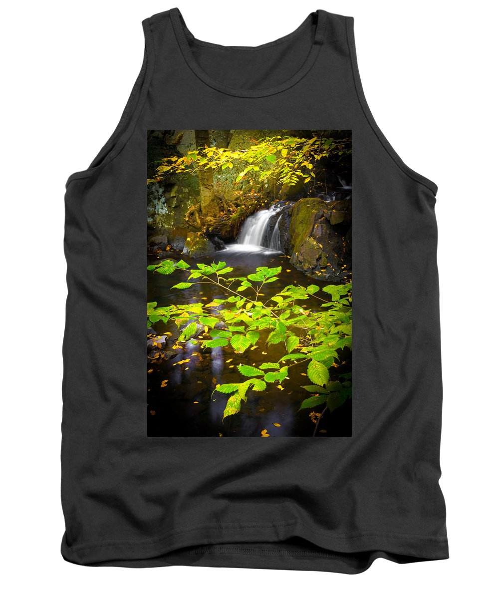 Leaves Tank Top featuring the photograph Silent Brook by Mark Robert Rogers
