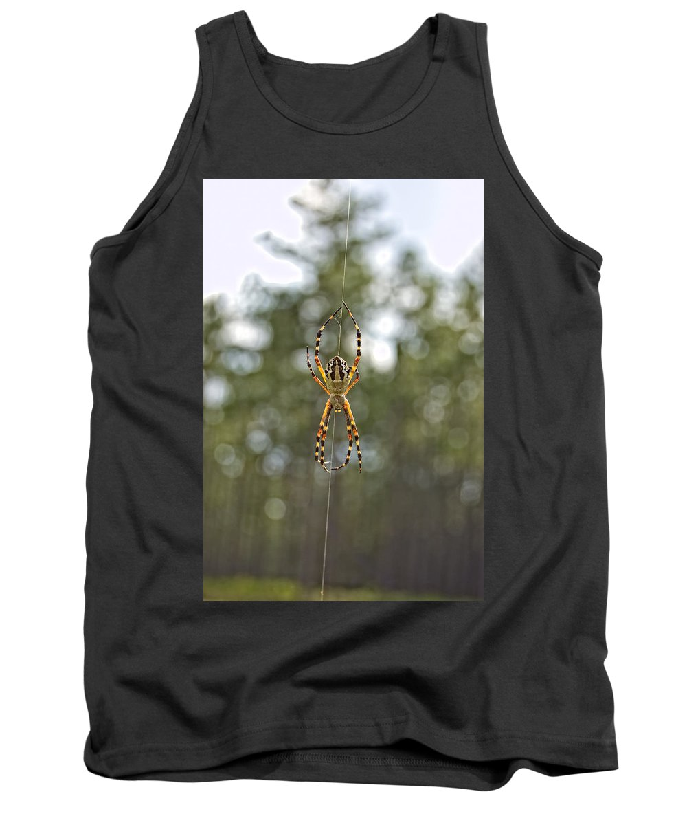 Argiope Argentata Tank Top featuring the photograph Silver Argiope by Rich Leighton