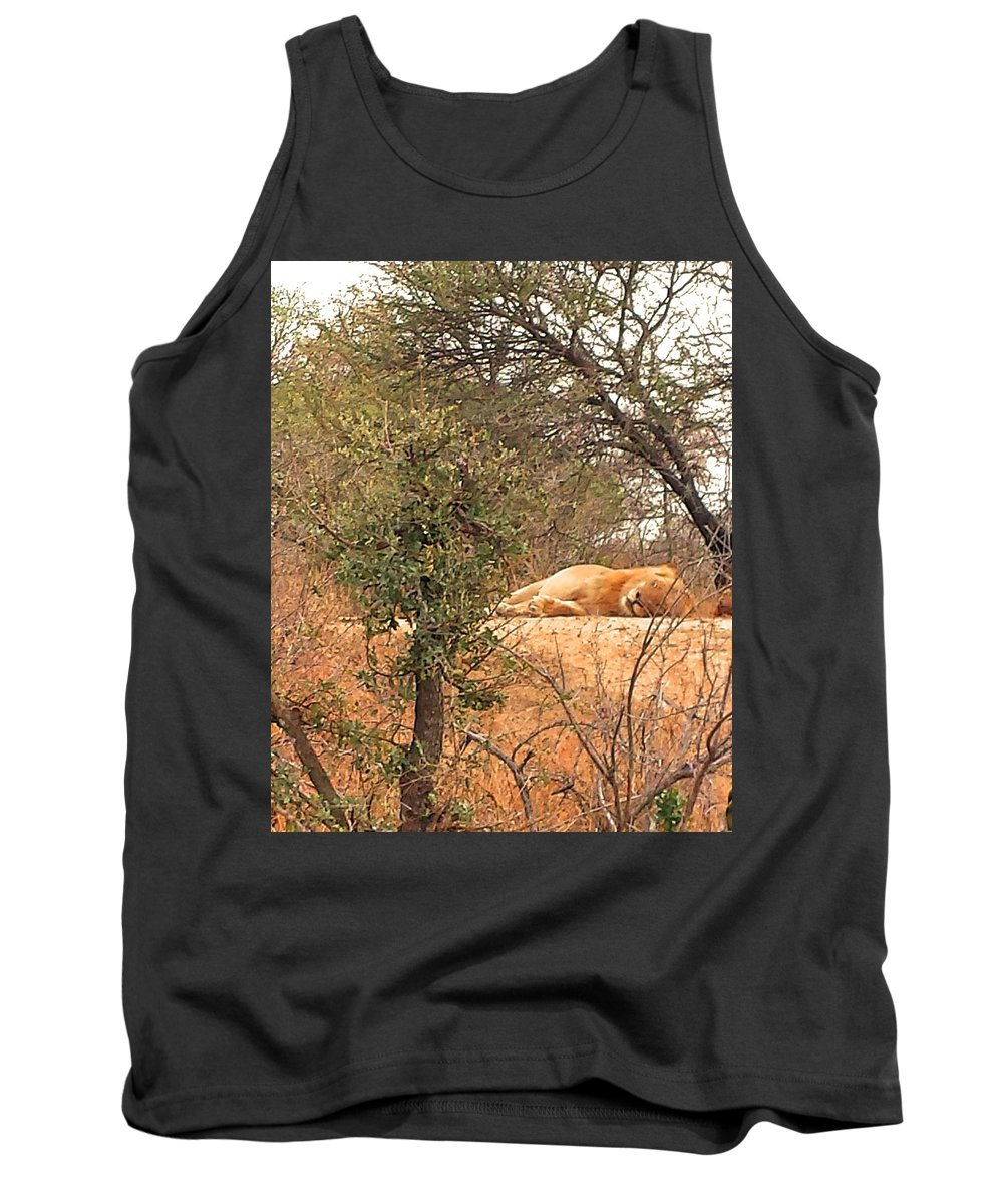 Lion Tank Top featuring the photograph Sleep Time by Lisa Byrne