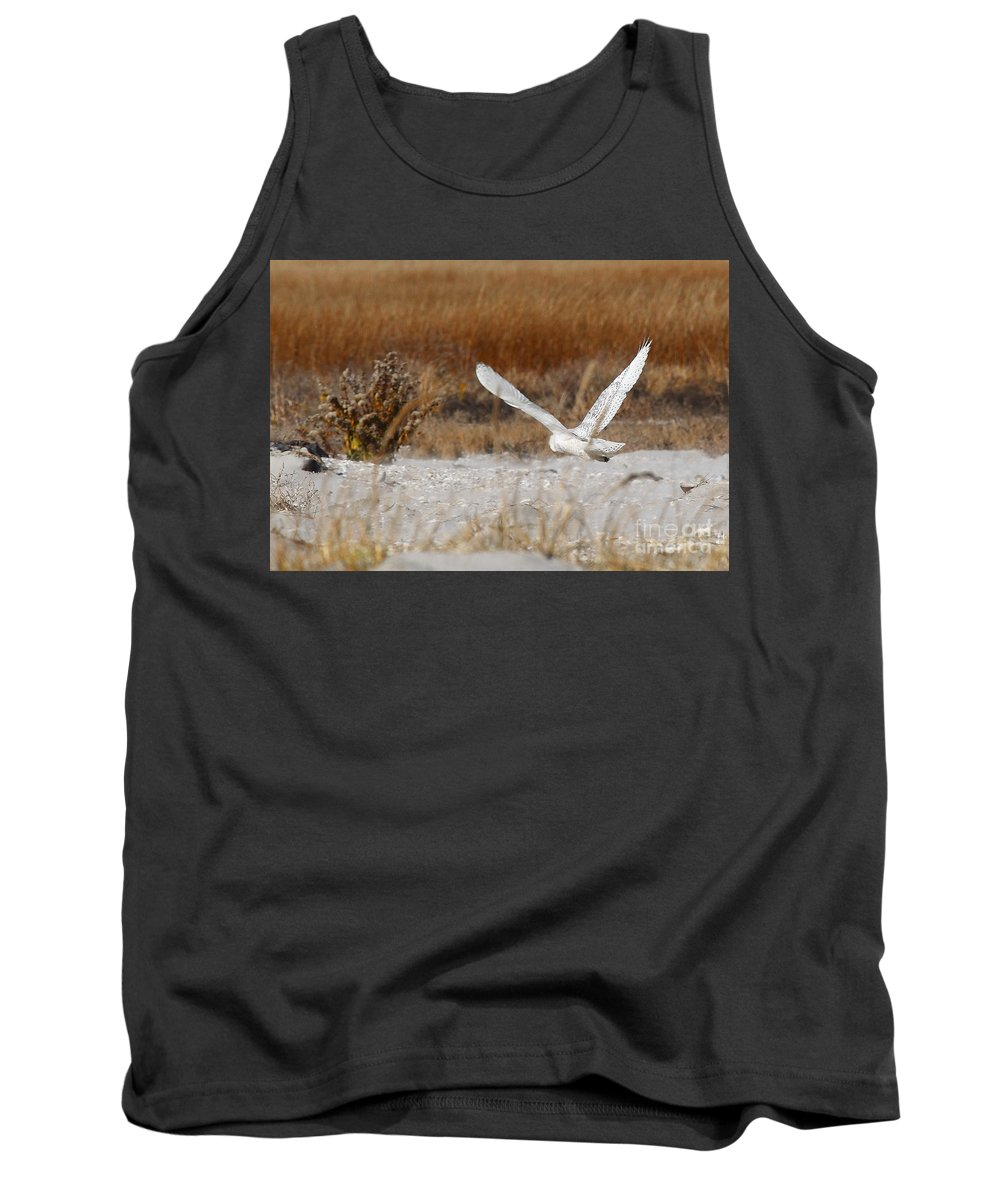 snowy Owl Tank Top featuring the photograph Snowy Owl On The Hunt by Traci Law