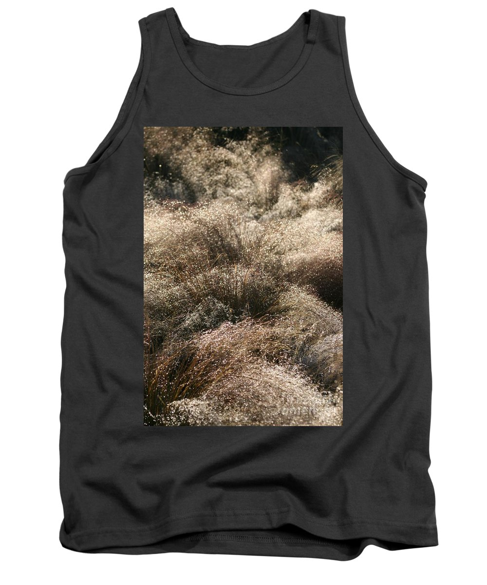 Grasses Tank Top featuring the photograph Sparkling Grasses by Nadine Rippelmeyer