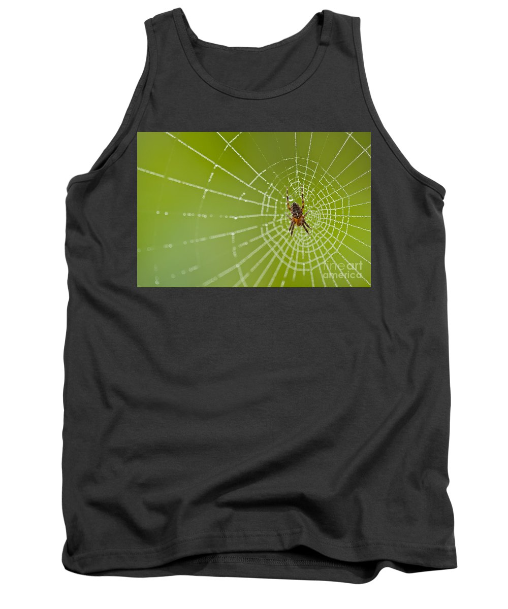 Aranae Tank Top featuring the photograph Spider Web With Dew Drops With Spider On Web by Jim Corwin