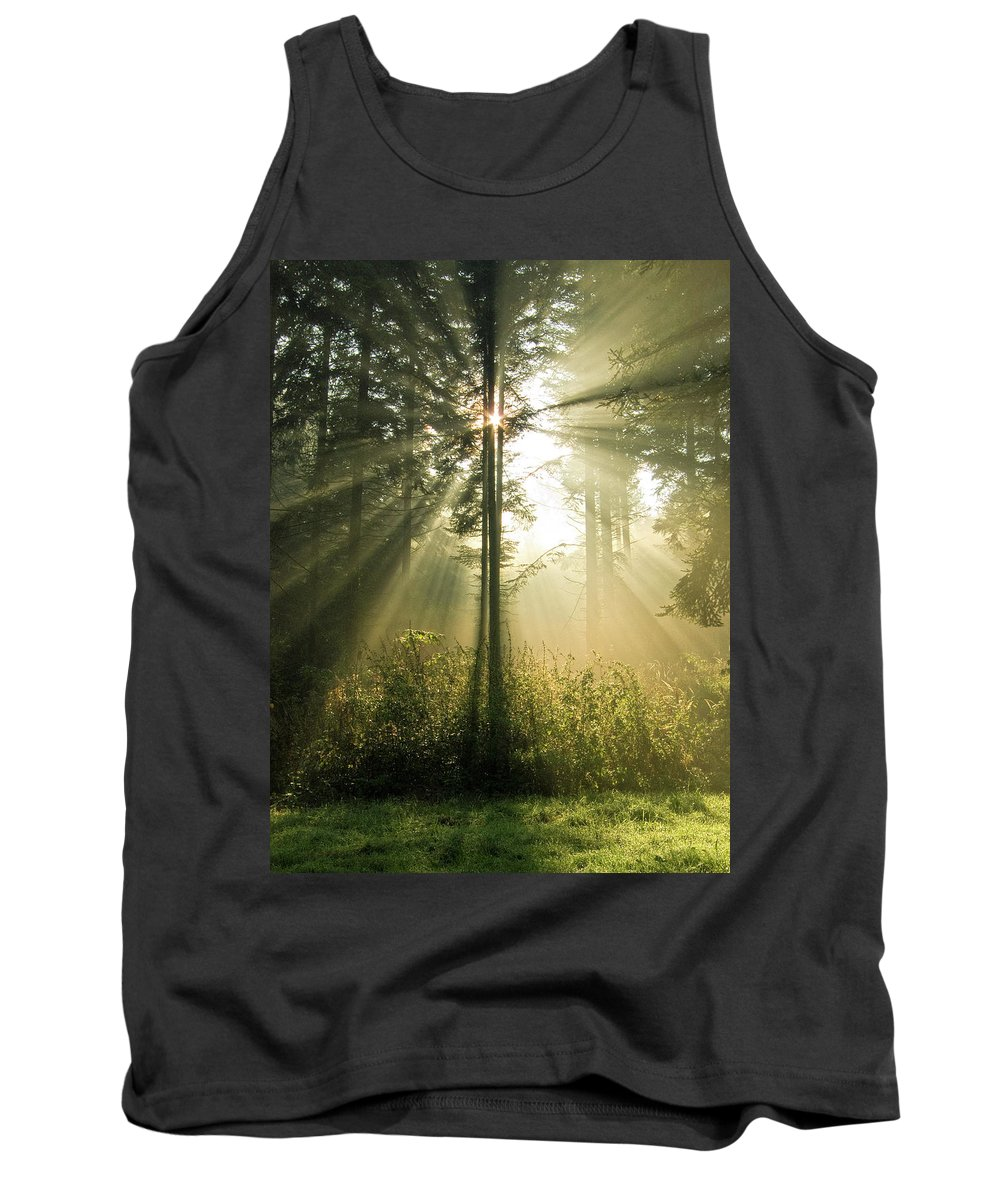 Nature Tank Top featuring the photograph Splendour by Daniel Csoka