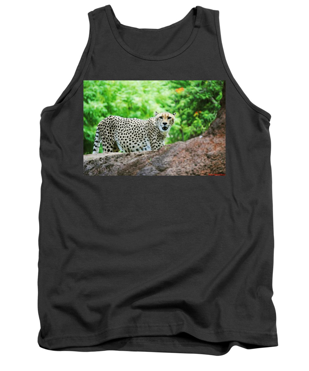 Cheetah Tank Top featuring the photograph Spotted by Mary Caputa