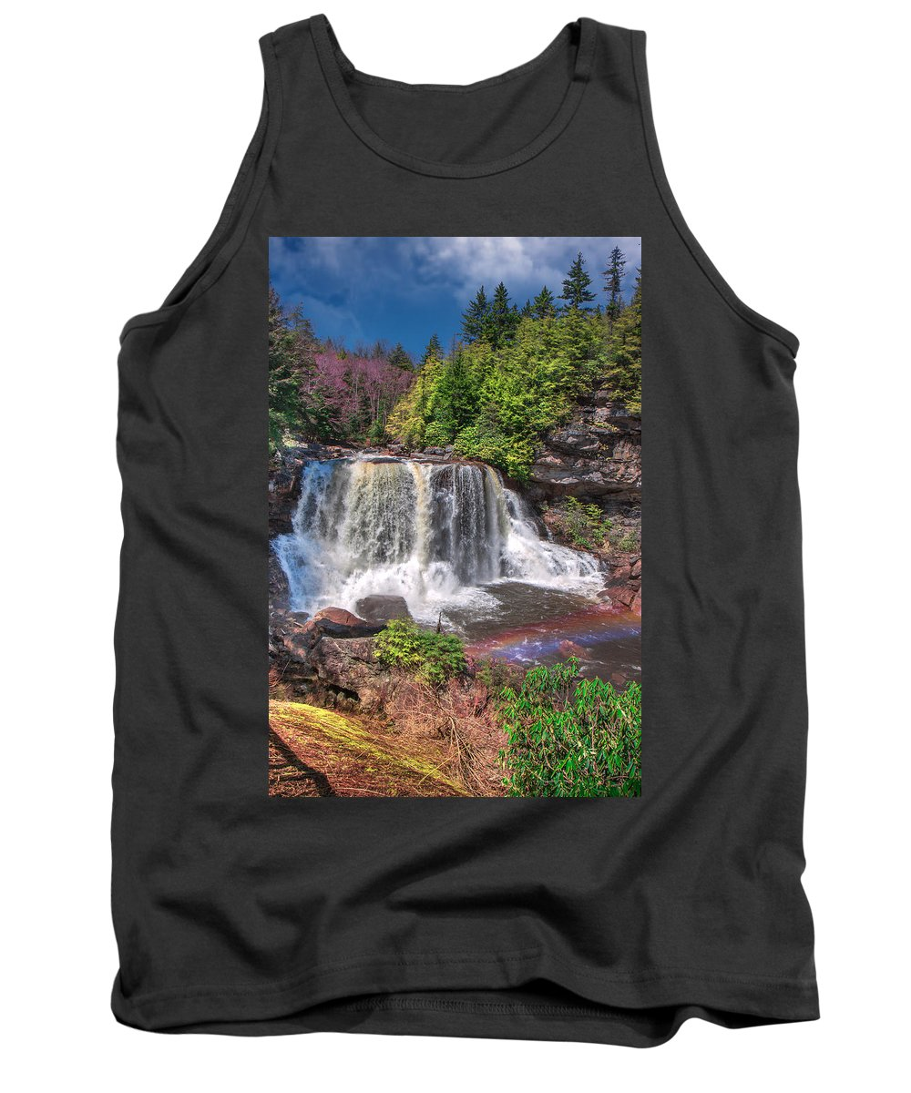Blackwater Falls State Park Tank Top featuring the photograph Spring At Blackwater Falls by Mary Almond
