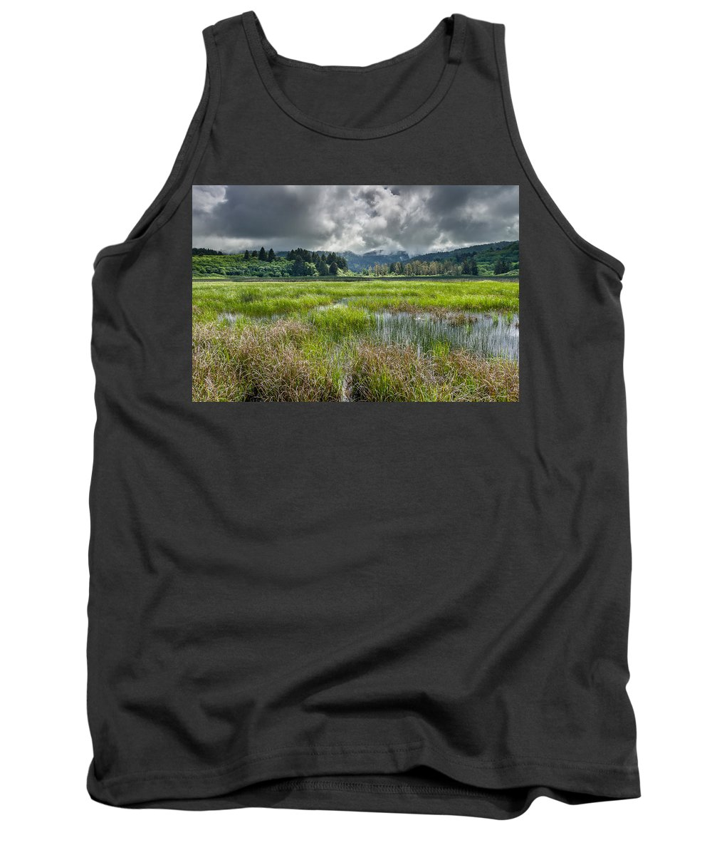 Dry Lagoon Tank Top featuring the photograph Spring At Dry Lagoon 1 by Greg Nyquist