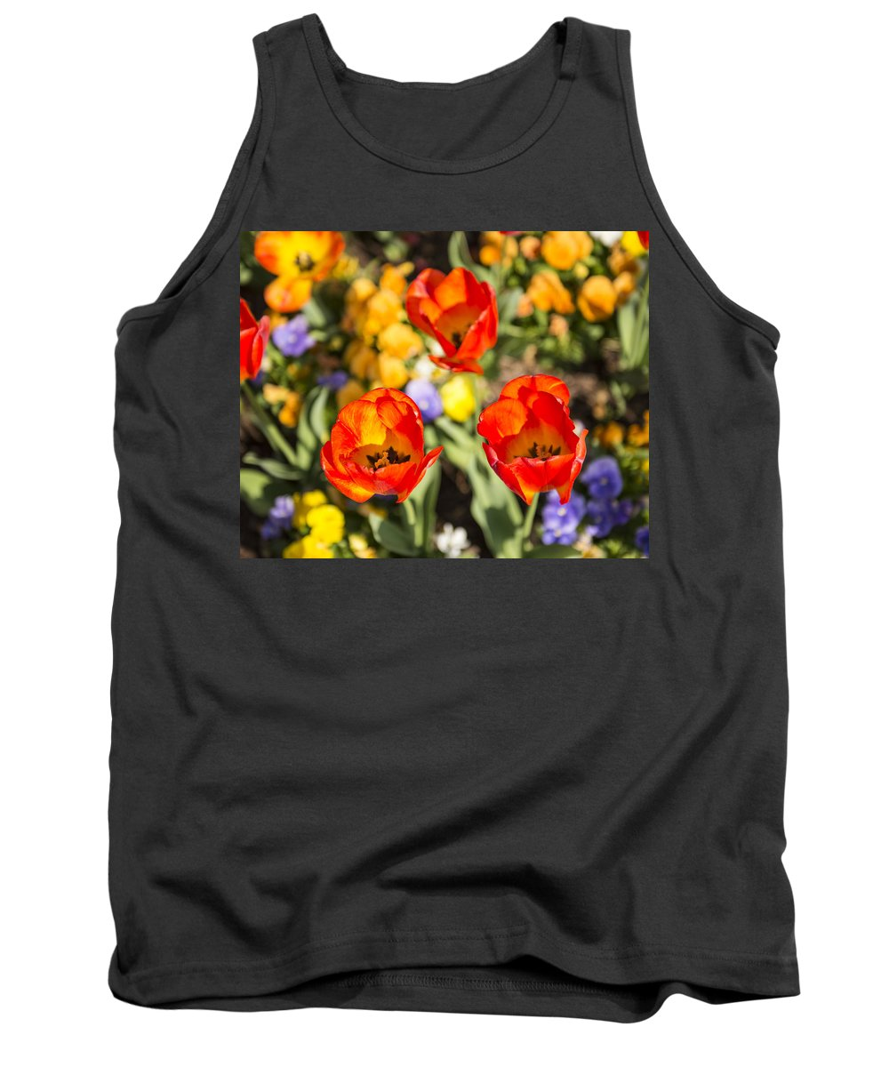 Spring Flowers Tank Top featuring the photograph Spring Flowers No. 4 by Greg Hager