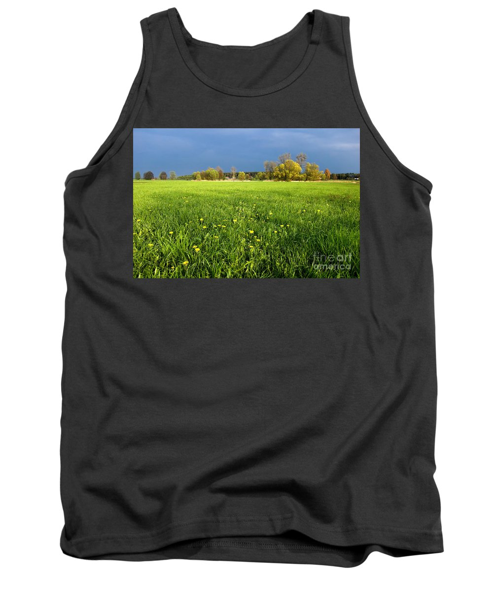 Blue Tank Top featuring the photograph Spring Scenery by Michal Bednarek