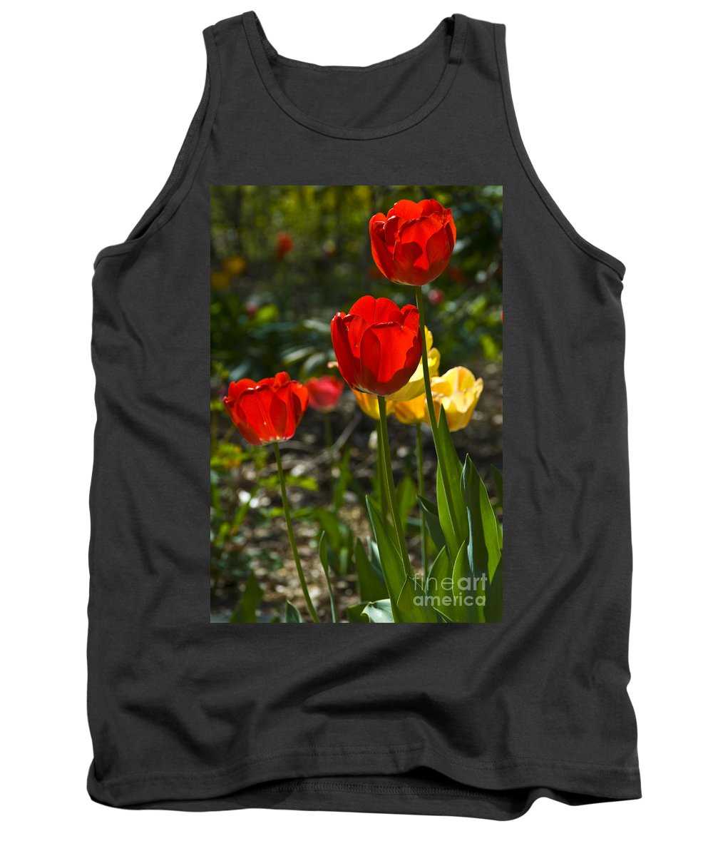 Flower Tank Top featuring the photograph Spring Tulips by Anthony Sacco