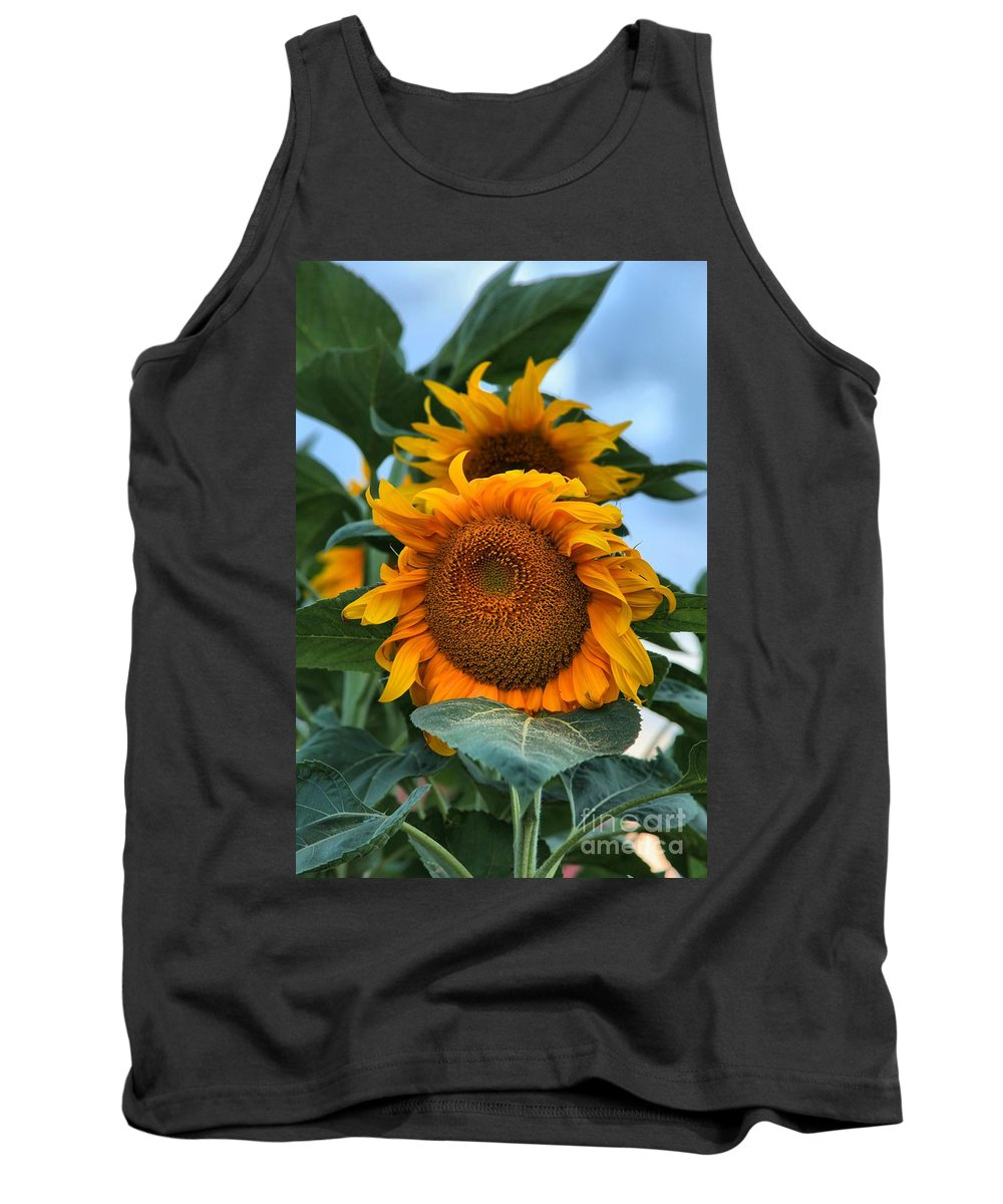 Sunflowers Tank Top featuring the photograph Squamish Sunflower Portrait by Adam Jewell