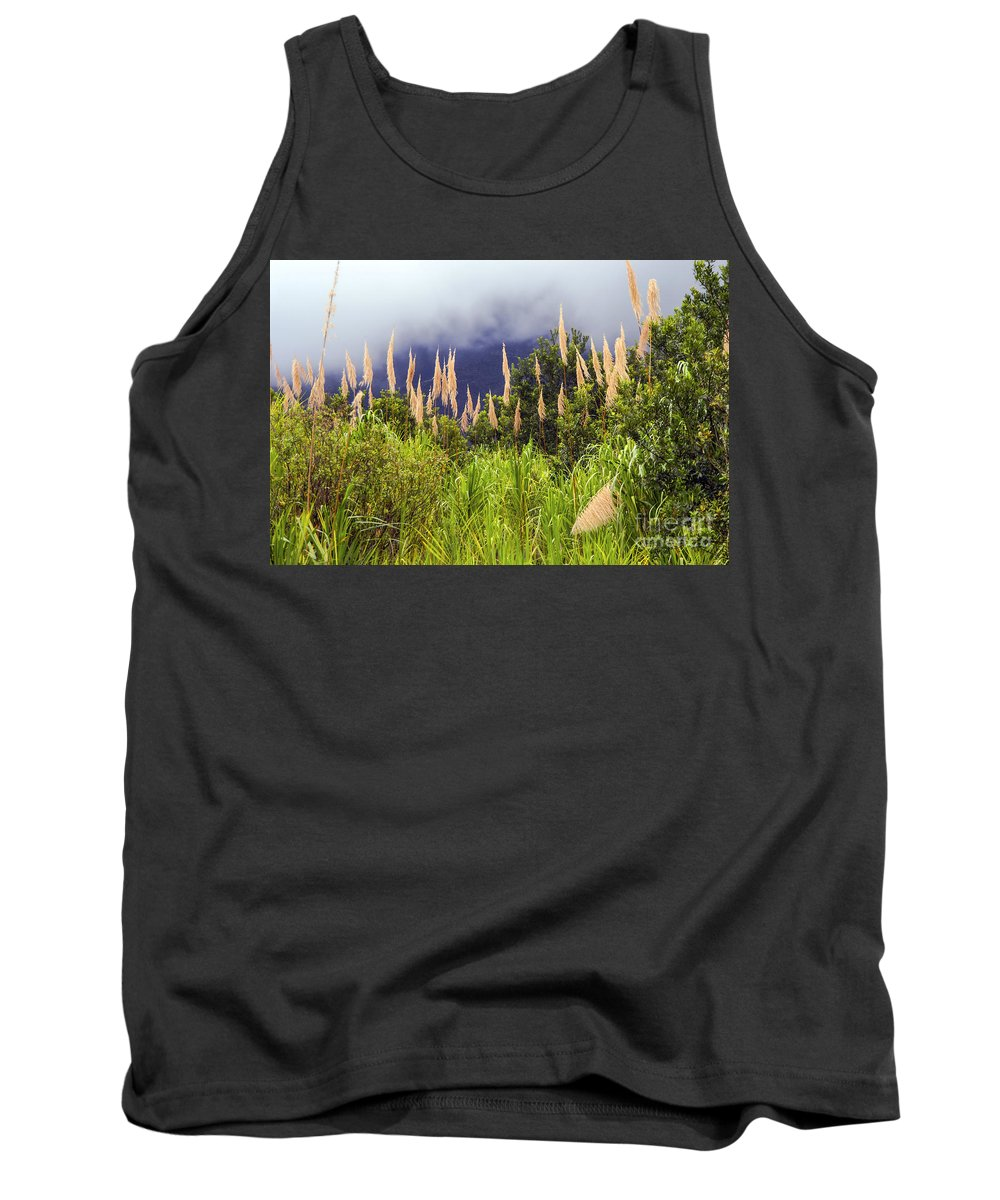 Arenal Volcano Region Costa Rica Sugar Cane Still Life Plant Plants Nature Tank Top featuring the photograph Sugar Cane by Bob Phillips