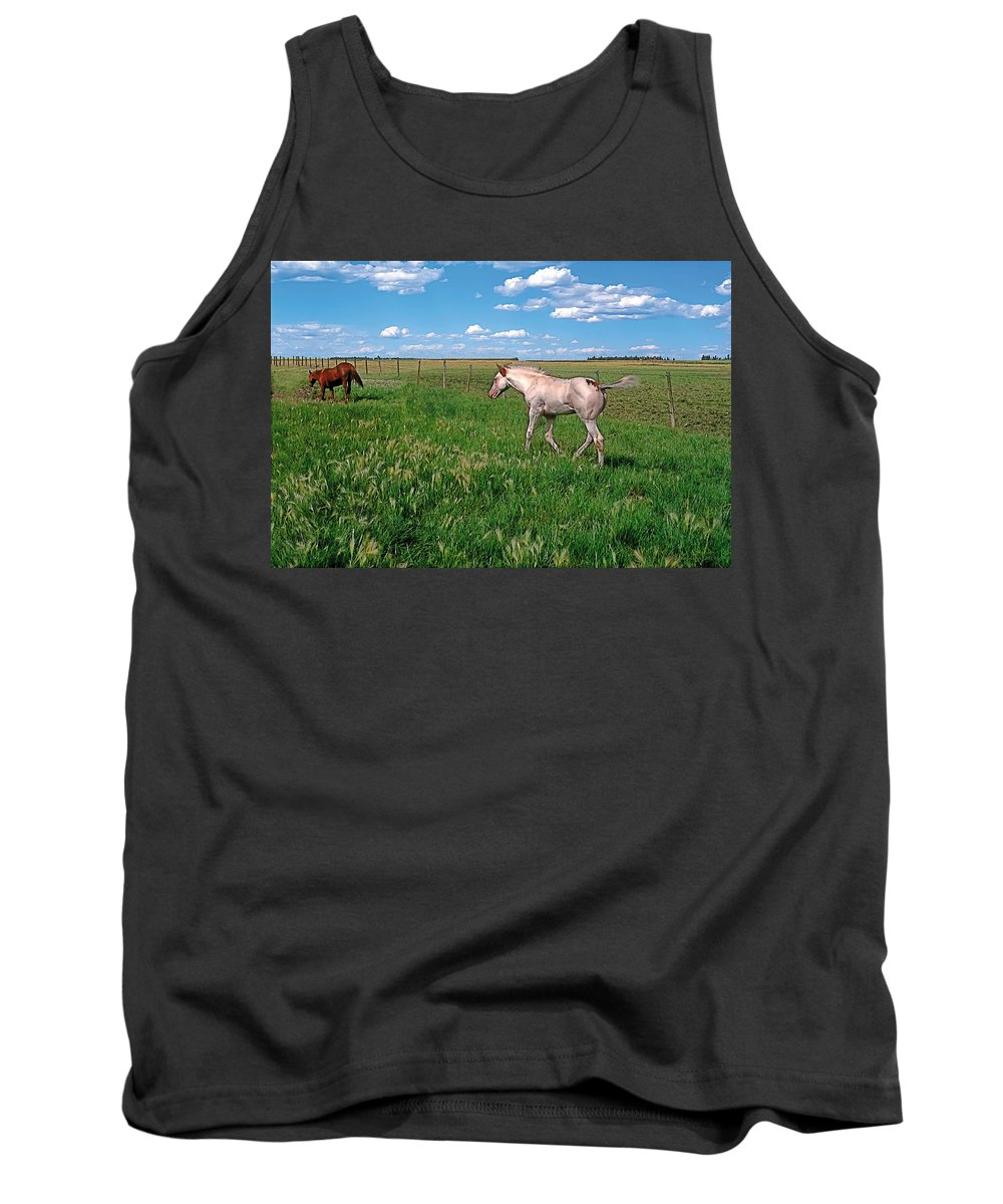 Scenic Tank Top featuring the painting Summer Colt by Terry Reynoldson