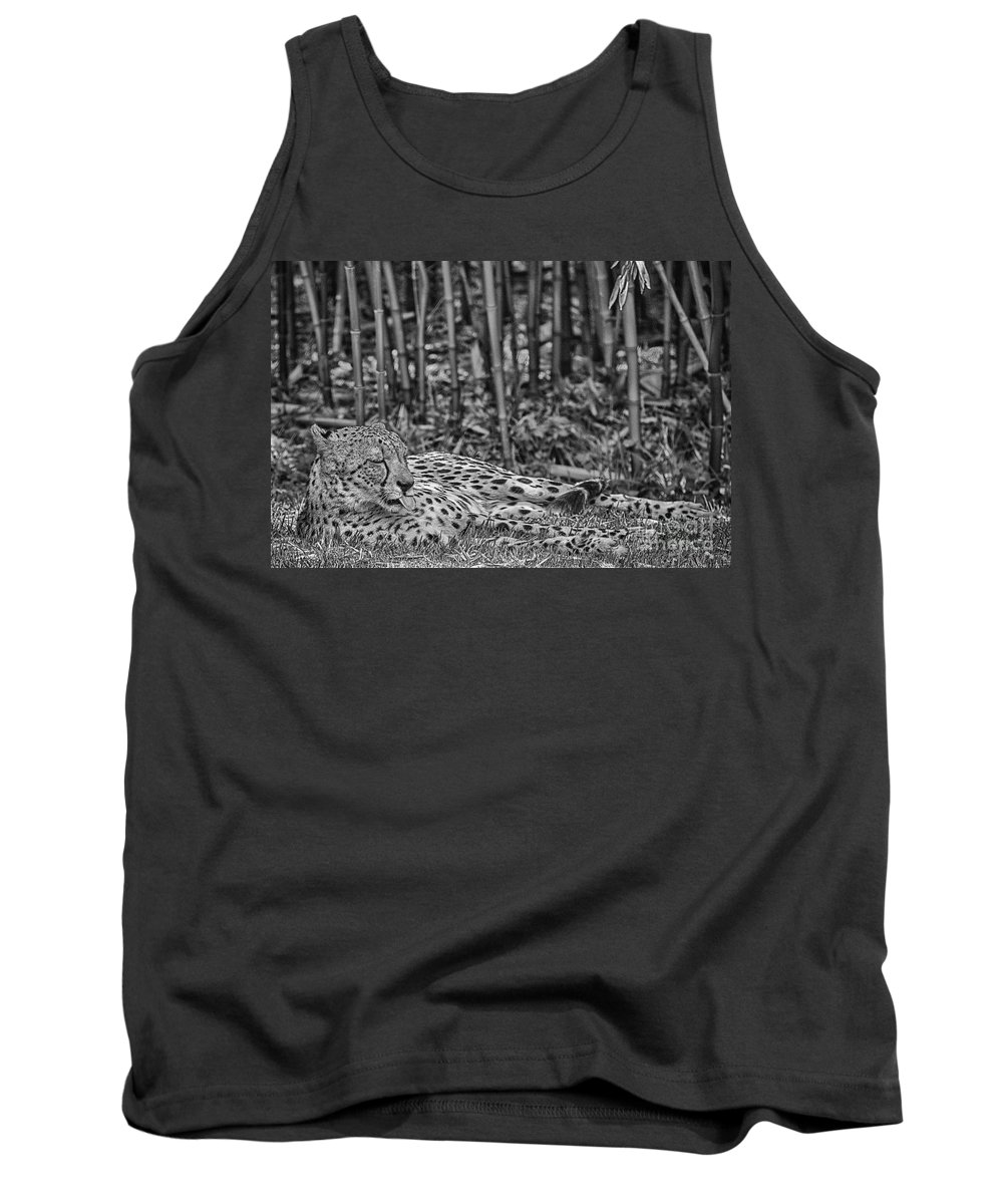 Cheetah Tank Top featuring the photograph Sunday Afternoon Lazing-black And White by Douglas Barnard