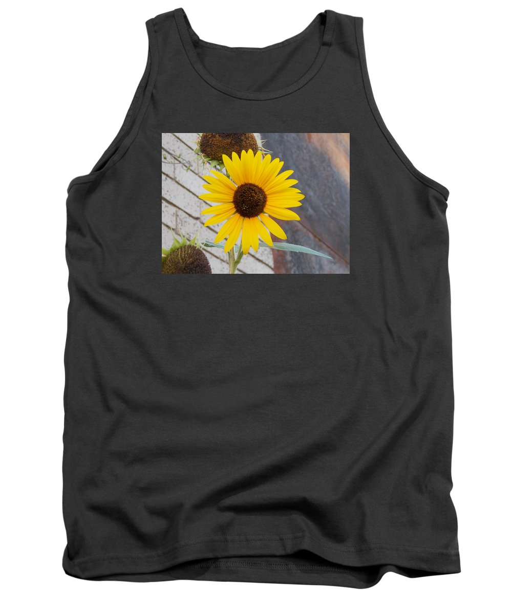 Sunflower Tank Top featuring the photograph Sunflower 1 by Nina Kindred