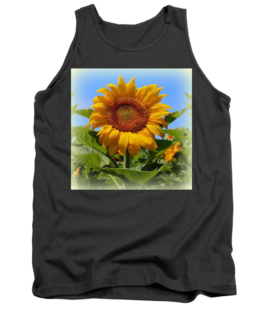 Northcutt Tank Top featuring the photograph Sunflower Sunshine by Betty Northcutt