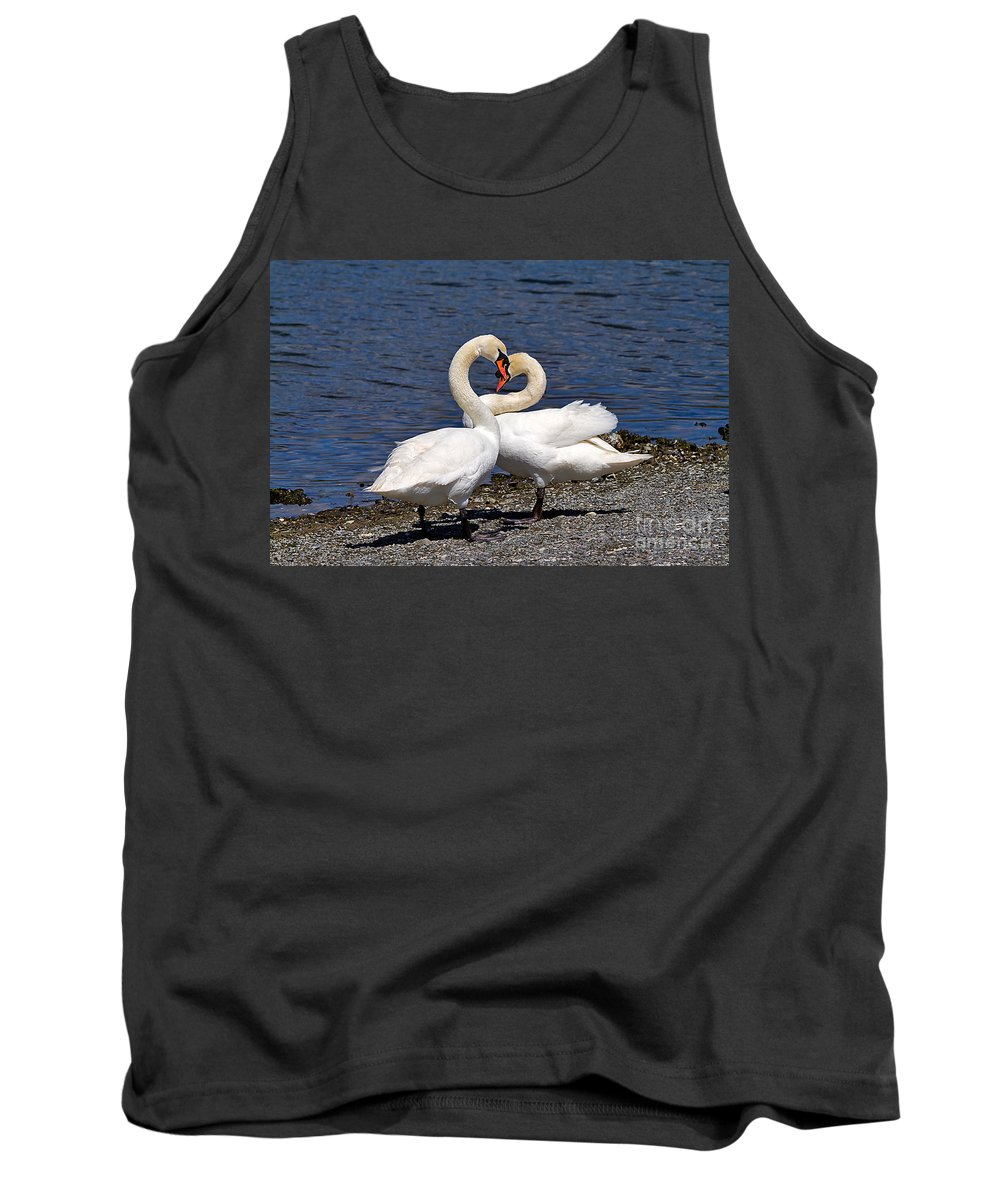 Nature Tank Top featuring the photograph Swans Courting by Louise Heusinkveld