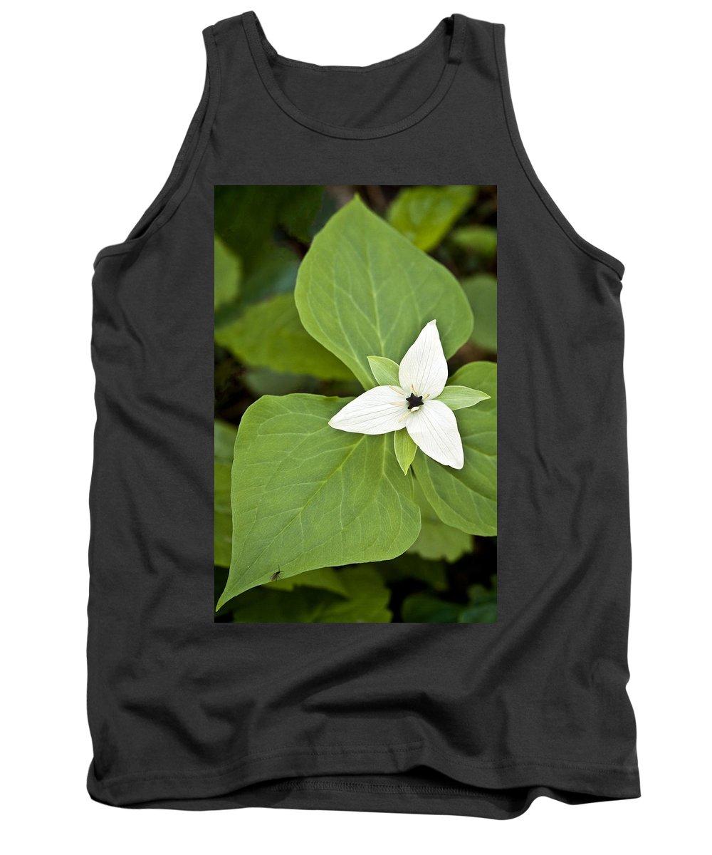Sweet Tank Top featuring the photograph Sweet White Trillium by Shari Jardina