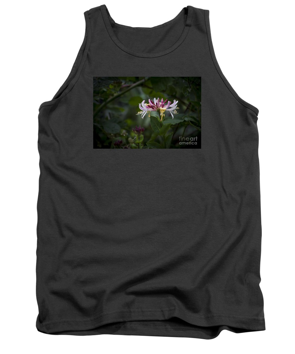 Clare Bambers. Tank Top featuring the photograph Sweetly Scented. by Clare Bambers