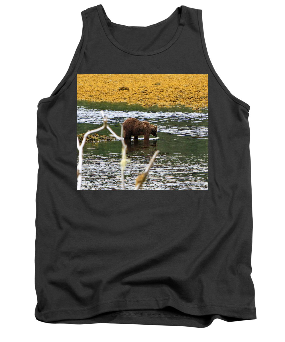 Brown Bear Tank Top featuring the photograph Swim Time by Shoal Hollingsworth
