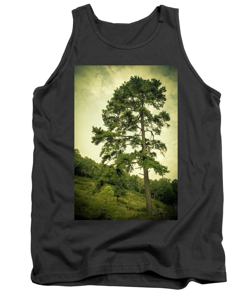 Tree Tank Top featuring the photograph Tall Tree by Shane Holsclaw
