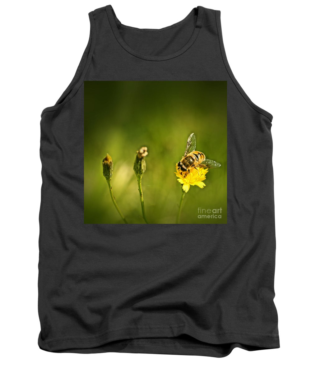 Bee Tank Top featuring the photograph Tasting So Good by Aimelle