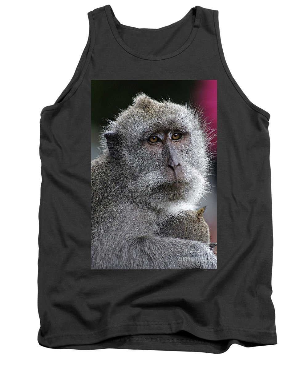 Animals Tank Top featuring the photograph That Look 2 by Ben Yassa