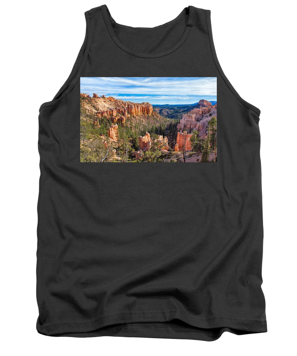 Landscape Tank Top featuring the photograph The Amphitheater At Farview Point by John M Bailey