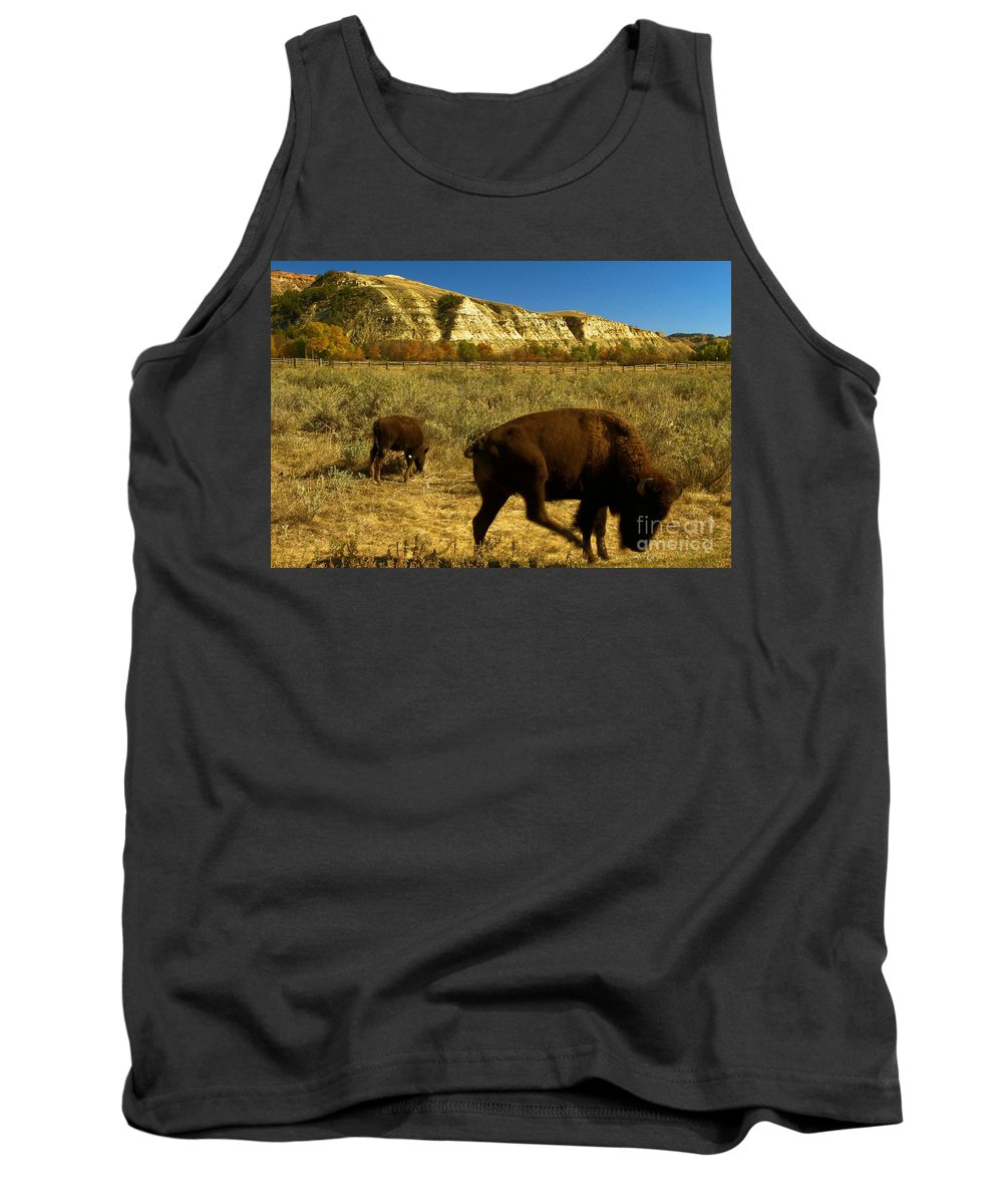 Theodore Roosevelt National Park Tank Top featuring the photograph The Buffalo Dance by Adam Jewell