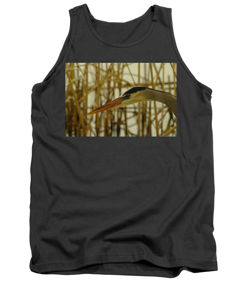 Herons Tank Top featuring the photograph The Face Of A Heron by Jeff Swan
