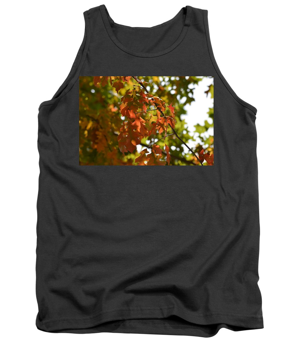 The Glory Of Autumn Tank Top featuring the photograph The Glory Of Autumn by Maria Urso