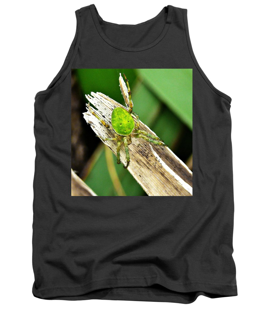 Green Tank Top featuring the photograph The Green Spider by Steve Taylor
