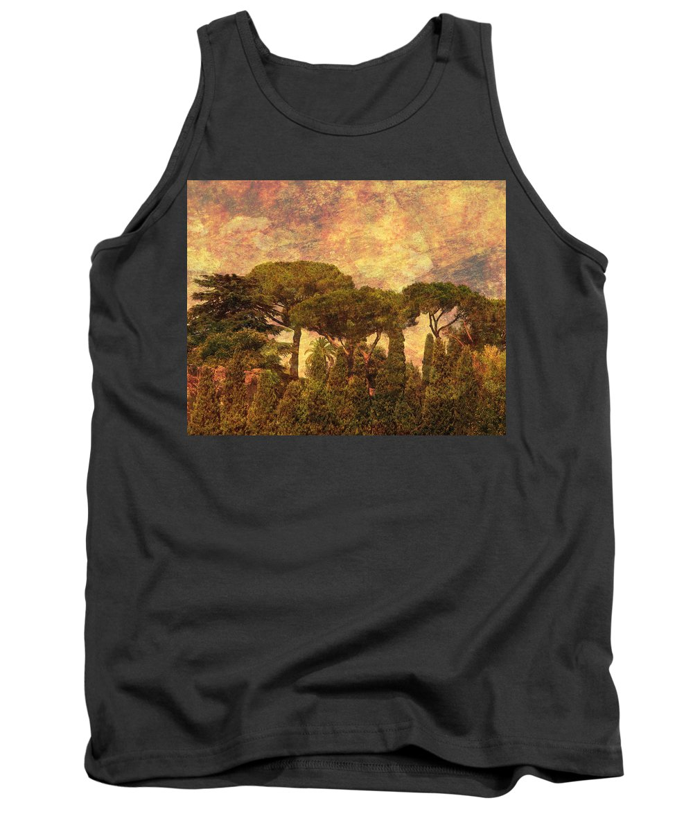 The Pines Of Rome Tank Top featuring the photograph The Pines Of Rome by Greg Matchick