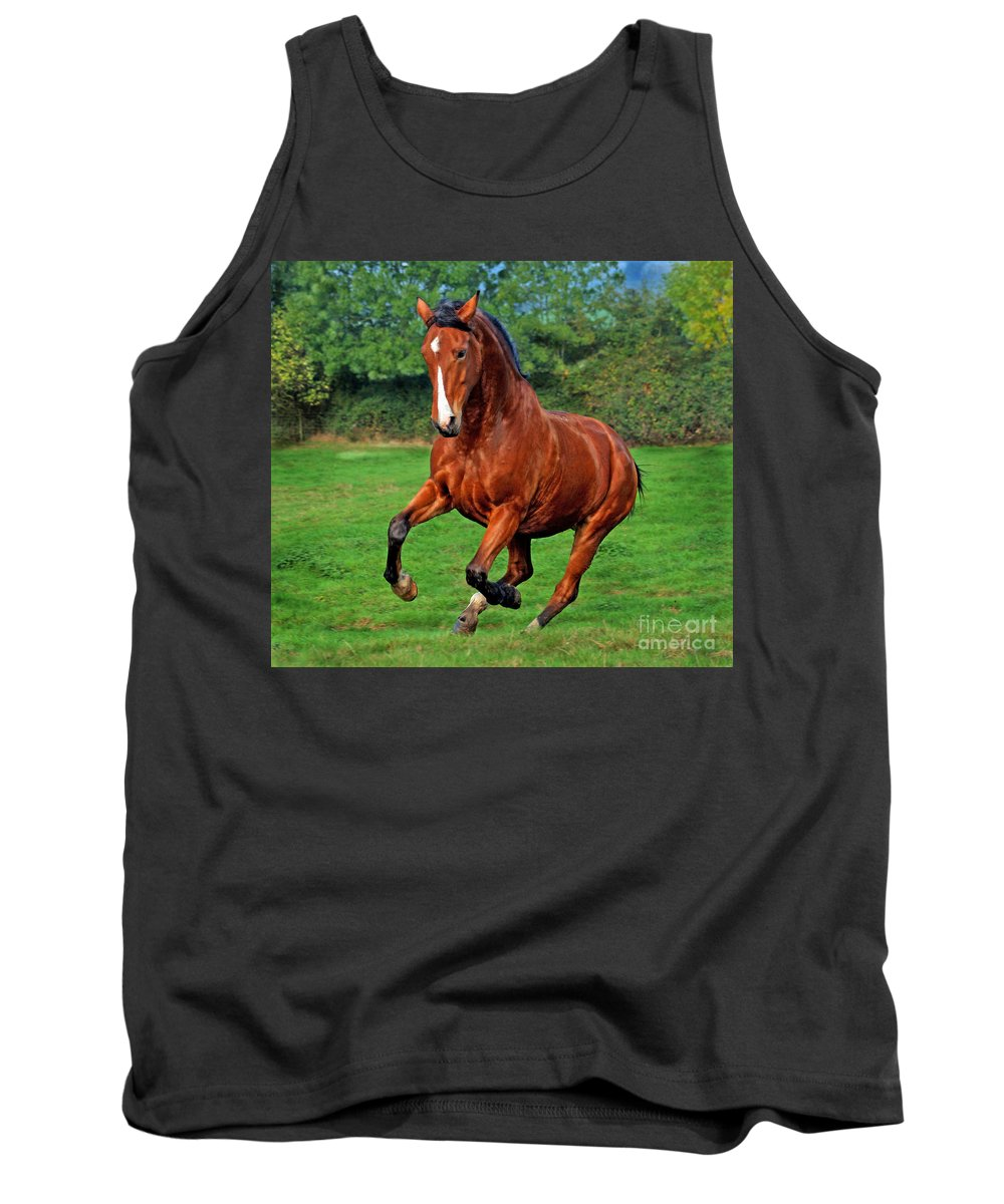 Horse Tank Top featuring the photograph The Pure Power by Angel Ciesniarska