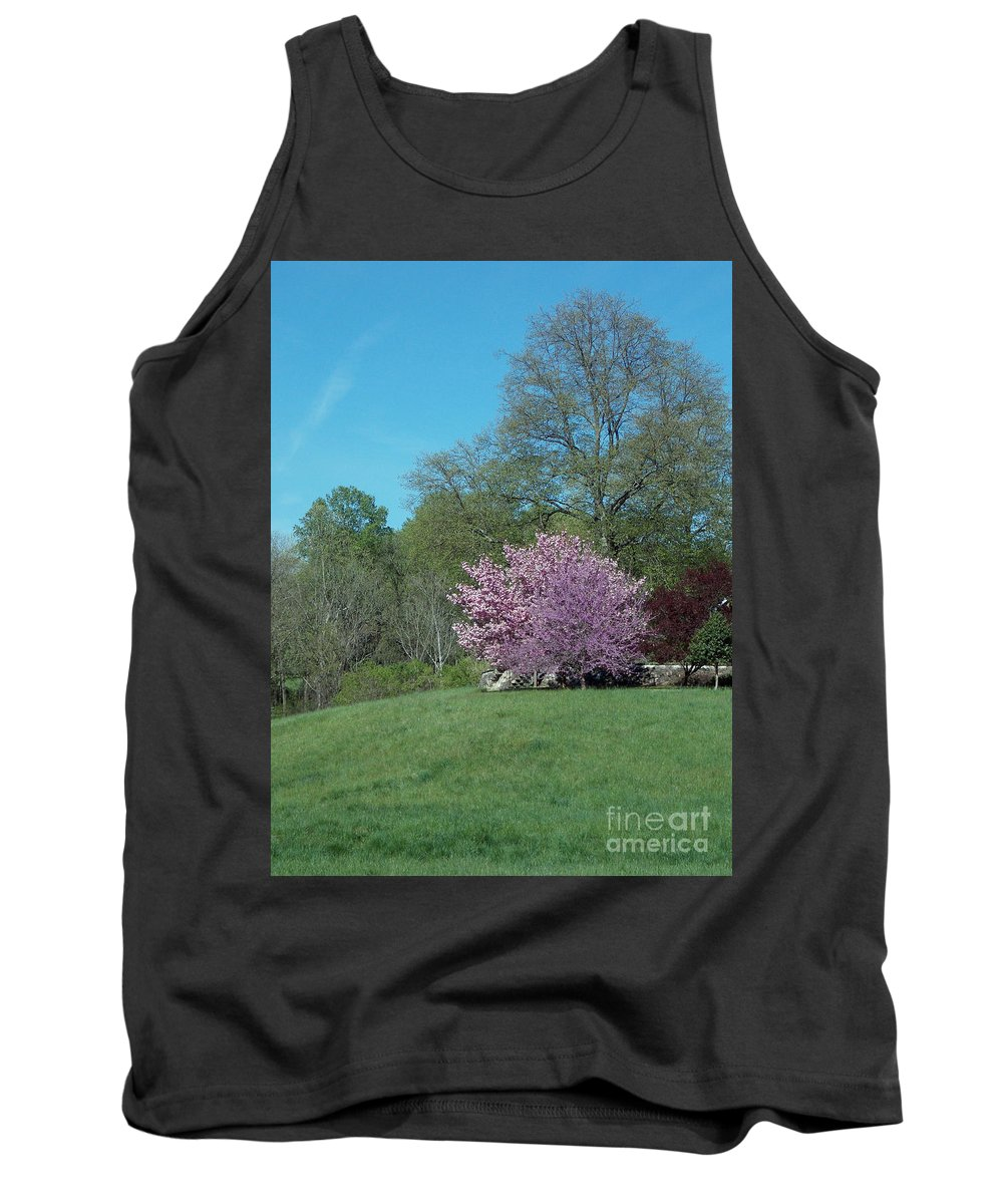 Scenic Tours Tank Top featuring the photograph Think Spring by Skip Willits