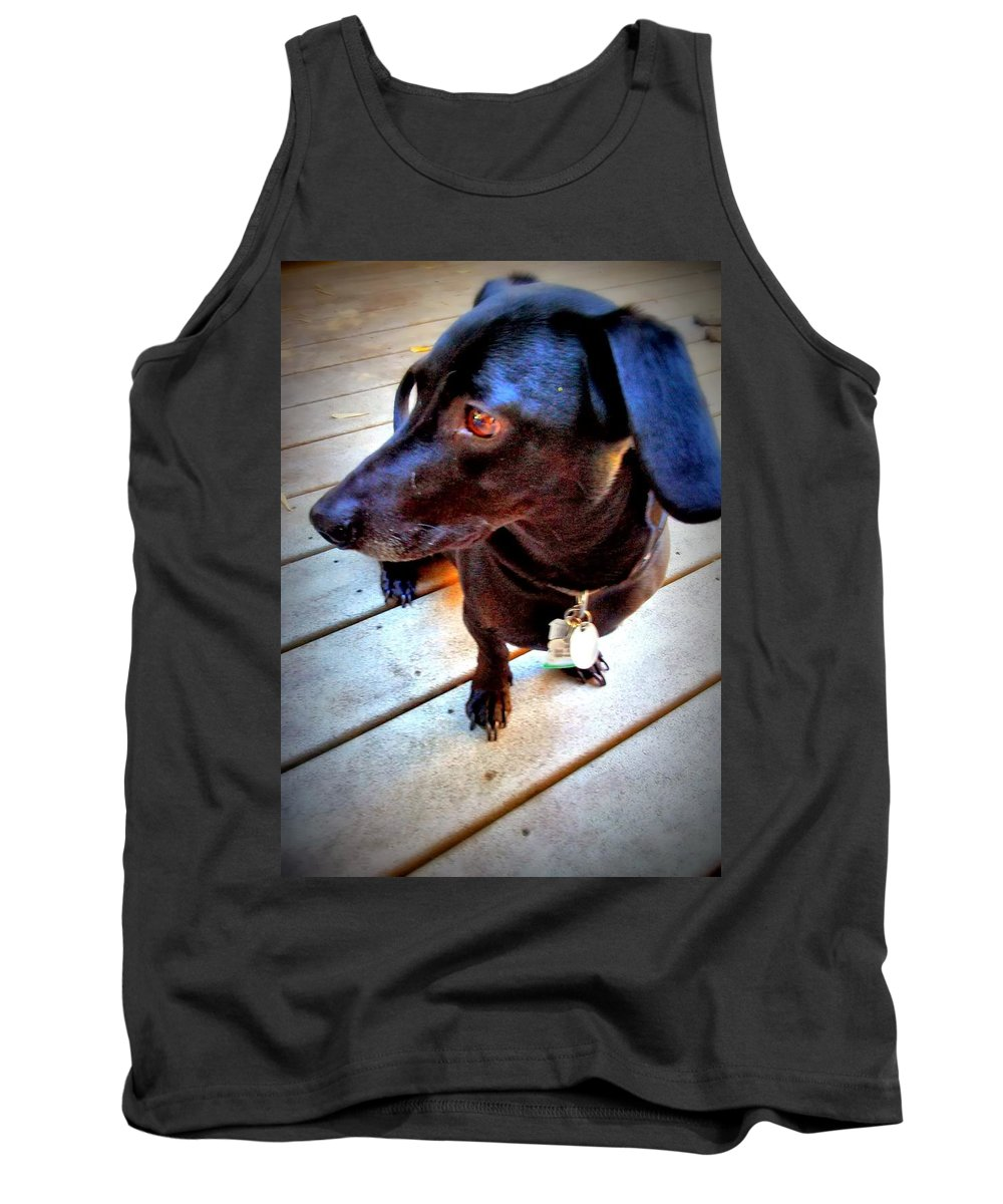 Dog Tank Top featuring the photograph Thoughtful Dachshund by Barbara Christensen