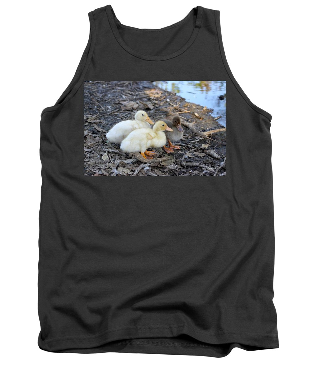 Baby Tank Top featuring the photograph Three Baby Ducks by Diana Haronis