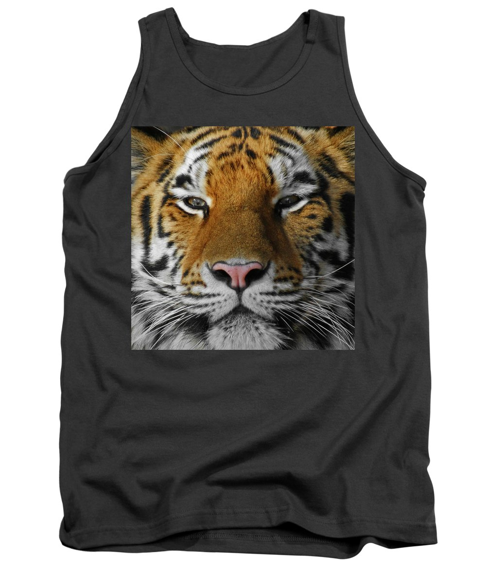 Tiger Tank Top featuring the photograph Tiger 1 by Ernie Echols