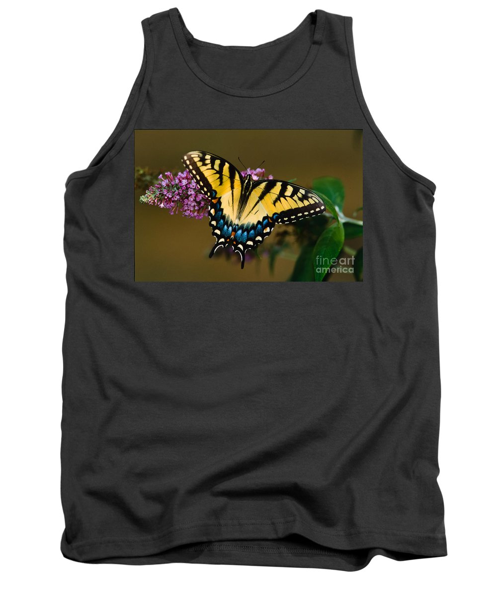 Tiger Swallowtail Tank Top featuring the photograph Tiger Swallowtail Butterfly by Joe Elliott