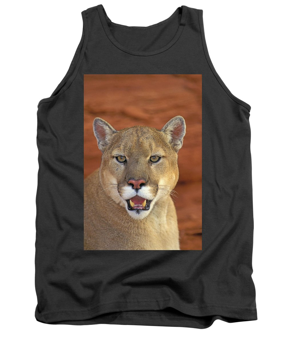 Tank Top featuring the photograph Tk0460, Thomas Kitchin Cougarmountain by First Light