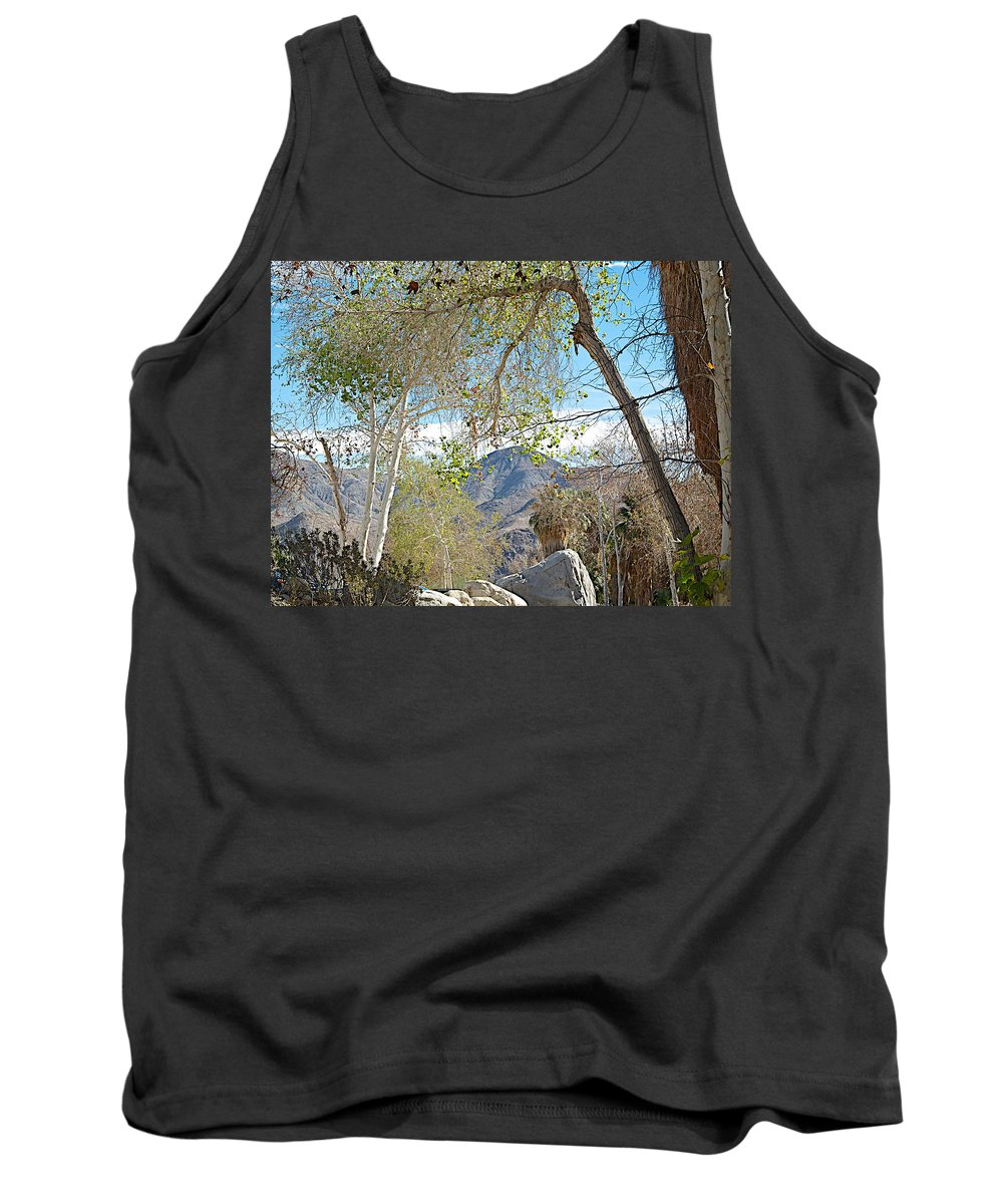 Trailhead Area In Andreas Canyon In Indian Canyons Tank Top featuring the photograph Trailhead Area In Andreas Canyon In Indian Canyons-ca by Ruth Hager