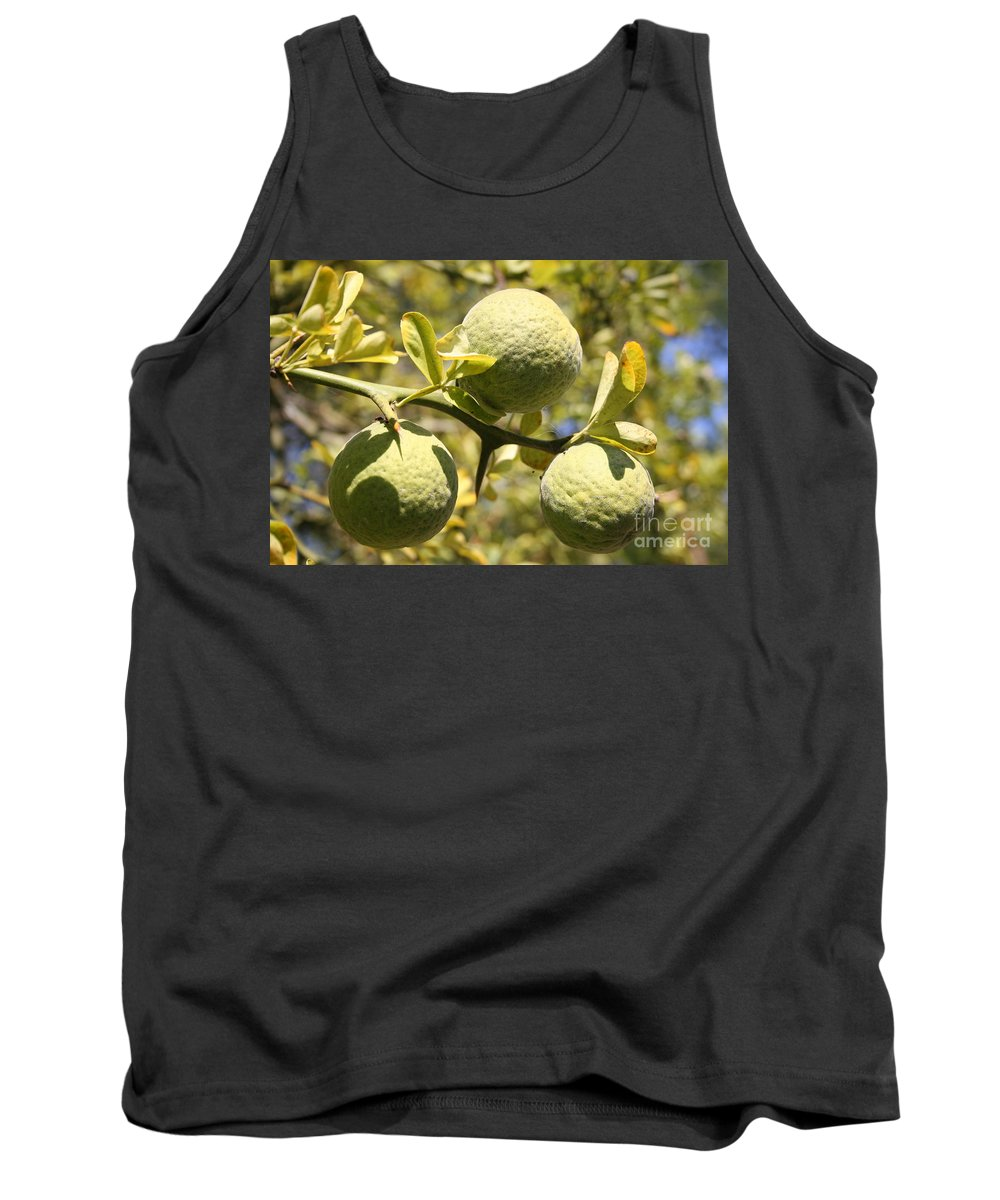 Fruit Tank Top featuring the photograph Tree Fruit by Christiane Schulze Art And Photography